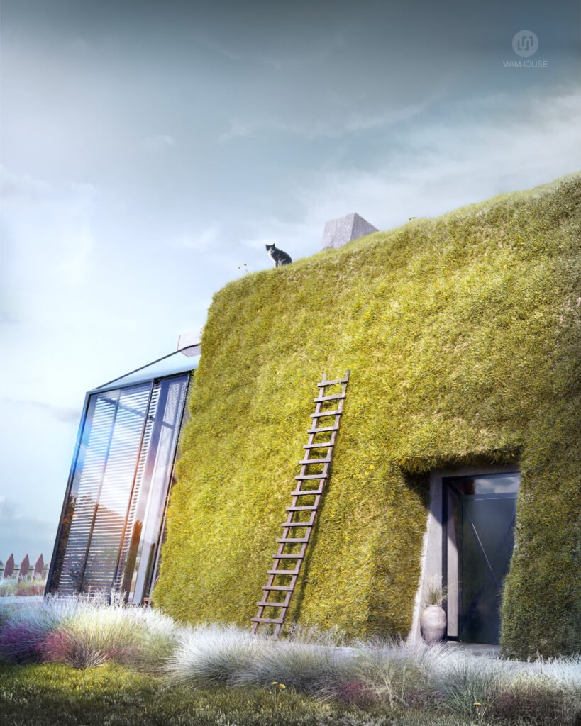 4- GREENHOUSE – nowoczesny dom wiejski (bok domu – wejście główne)